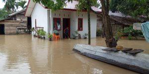 Hujan Lebat Aceh Timur Dilanda Banjir