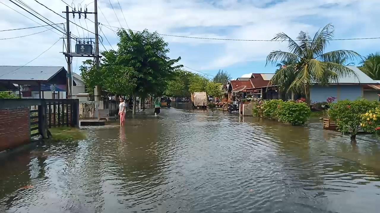 Banjir ROB Terjadi di Tiga Desa,Pemerintah diharapkan Peduli