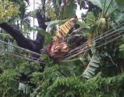 Di Kecamatan Woyla, Listrik Sering Padam Tanpa Pemberitahuan