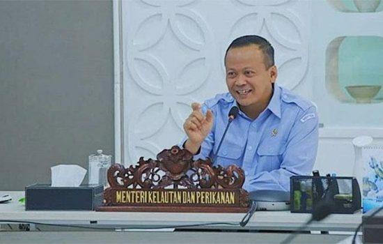 Diduga Kasus Bibit Lobster, Menteri KP Edhy Probowo Di Tangkap KPK
