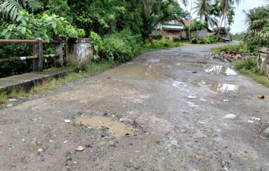 JSMA Minta Pemerintah Tinjau Jalan Lintas Seunebok - Alue kuyun